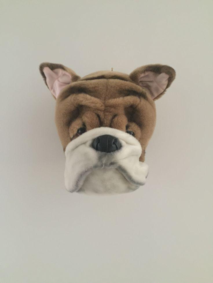 TROPHEE PELUCHE BOULEDOGUE Décoration Peluche murale : tendance et originale, petit crochet pour suspendre. Dimension : 30x25x25cm. Poids : 680g. Prix : 65 €