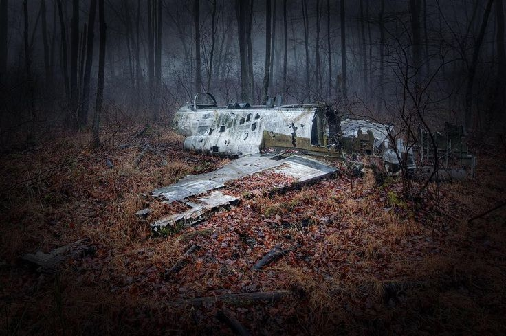 Downed jet from the 60's in West Milford NJ #jet #crash #hdr