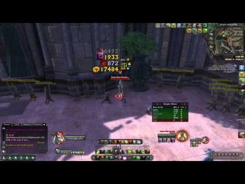 61 Druid Guide – Melee DPS with Strong Solo Gameplay Potential | RiftGrate