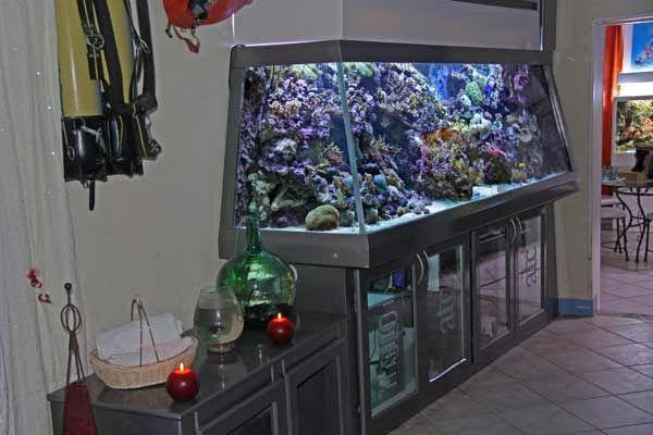 Les 25 meilleures id es concernant aquarium r cifal sur for Aquarium meuble design