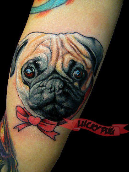 French Bulldog Tattoos | Boxer, Boston Terrier & Brits Engels Bulldog Tattoo Pictures | Squishy-Faced Dog Tattoo