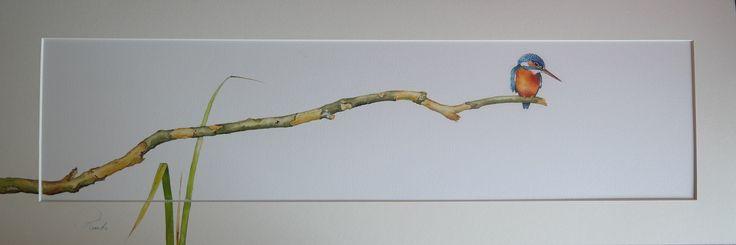 Remko van den Berg. Ijsvogel op lange tak