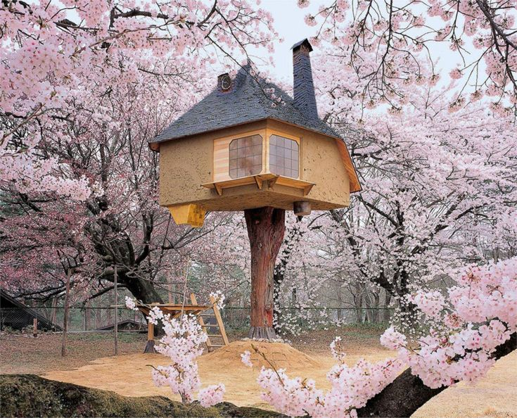 Teahouse Tetsu tree house. A Japanese teahouse in a tree by architect Terunobu Fujimori. The inside of it is simple and modern while the outside is pure fantasy. You can find this tree house surrounded by gorgeous cherry blossoms (sakura) at the...