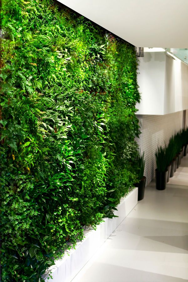 Wallscreen - Tropisk Design Green wall, plant, plants, living wall, Vitra