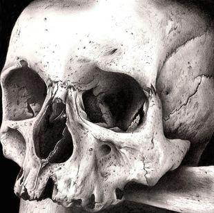 ☆ Skull Art By: Lhayton ☆