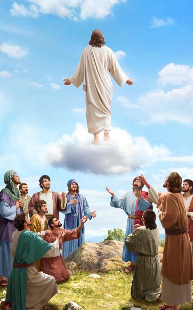 Gereja Tuhan Yang Mahakuasa Alkitab Tuhan Gereja