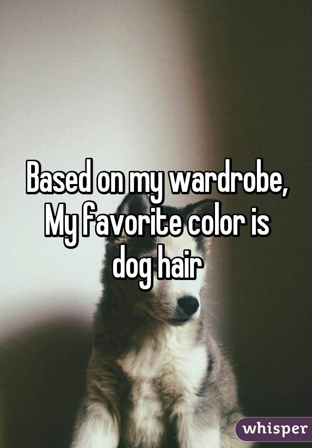 Based on my wardrobe, My favorite color is dog hair