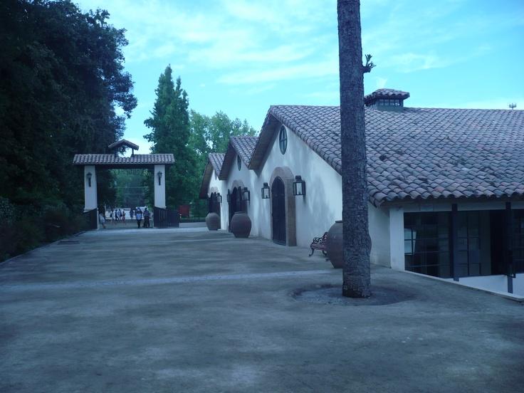 Concha y Toro ubicado en la zona de Pirque, gran viñedo con vinos de nivel internacional