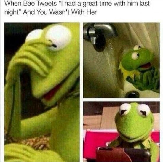 Top 20 Funniest Kermit The Frog Memes  NoWayGirl  Great)