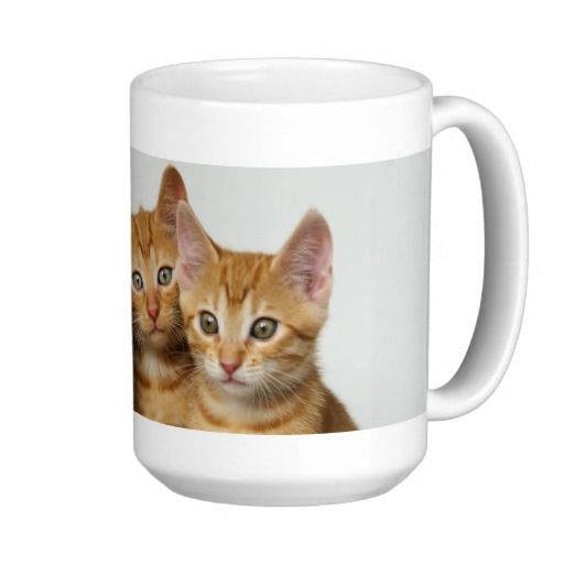 Three little #kittens, red tabby, side by side. #mug #Cats, red mackerel tabby, european shorthair, side by side, heads close together, the eyes look interested in the camera. They'll wait and see what happens. Drei kleine Kätzchen. Photographed by Katho Menden