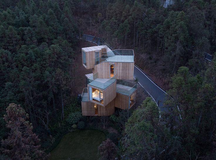 Maison dans la forêt luxueuse avec architecture hors-du-commun- vue aérienne
