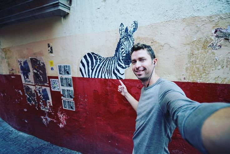 Found this slightly misplaced zebra peering over a wall in Guanajuato. Somewhat Banksy-esque and wouldn't be out of place back home Einstein the middle of Bristol!  __________ #exploringtheglobe #mexico #guanajuato #getoutside #bikenomad #graffiti #adventure #inspiredtravels #passionpassport #bicycletour #simplethings #instatravel #goniceplacesdogoodthings #streetart #traveltheworld