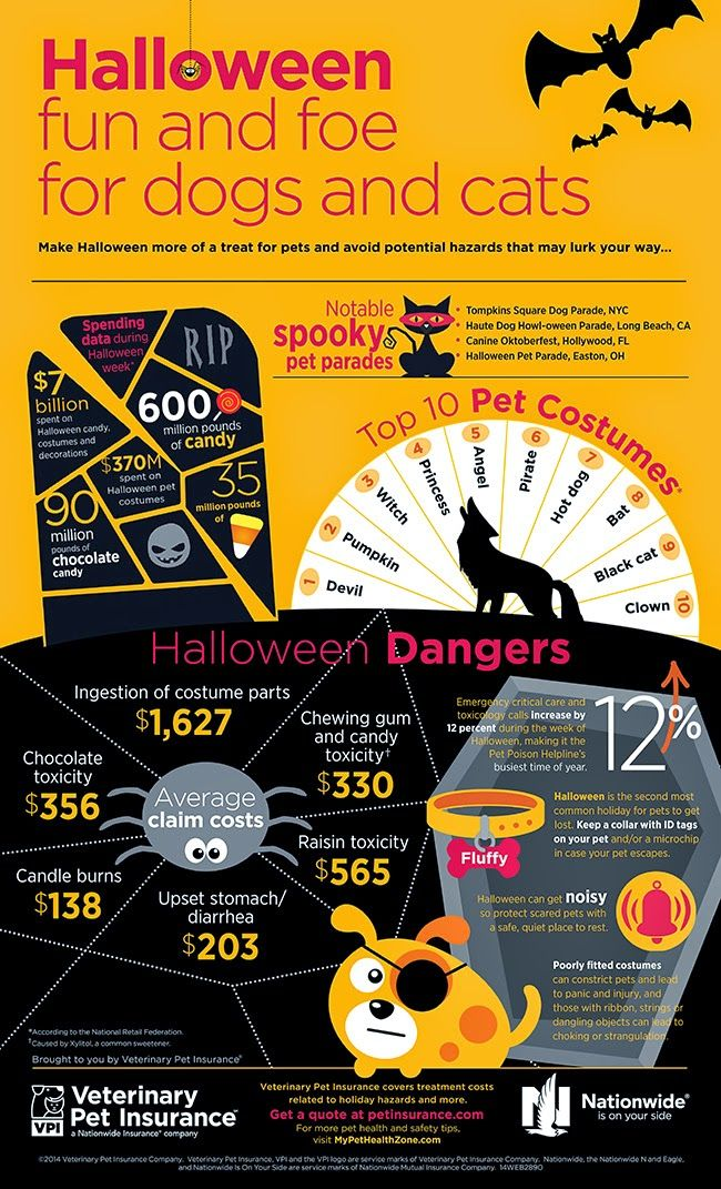 http://pawsforreaction.blogspot.ca/2014/10/safety-tips-how-to-keep-pets-safe-from.html