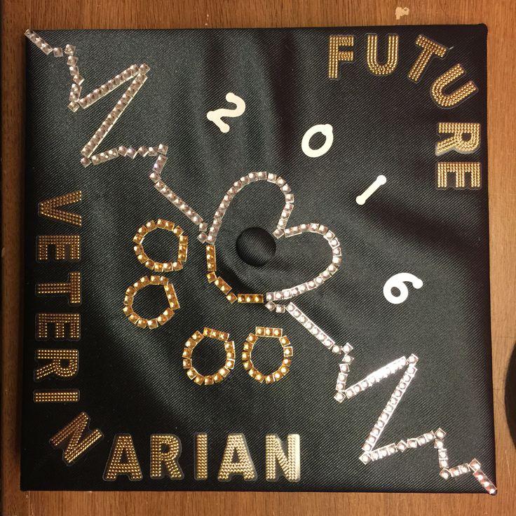 My Future Graduation Cap 2016 Veterinarian