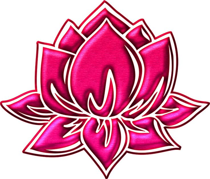 1000 Ideas About Lotus Flower Buddhism On Pinterest