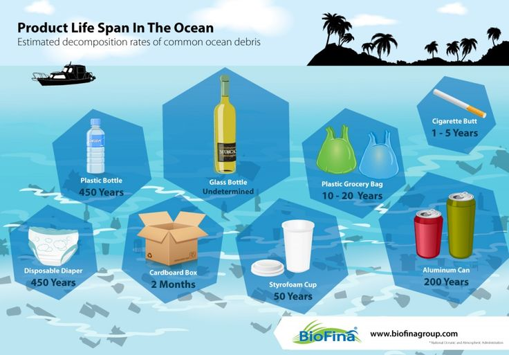 Product Life Span in The Ocean #Infographic | Ocean infographics ...