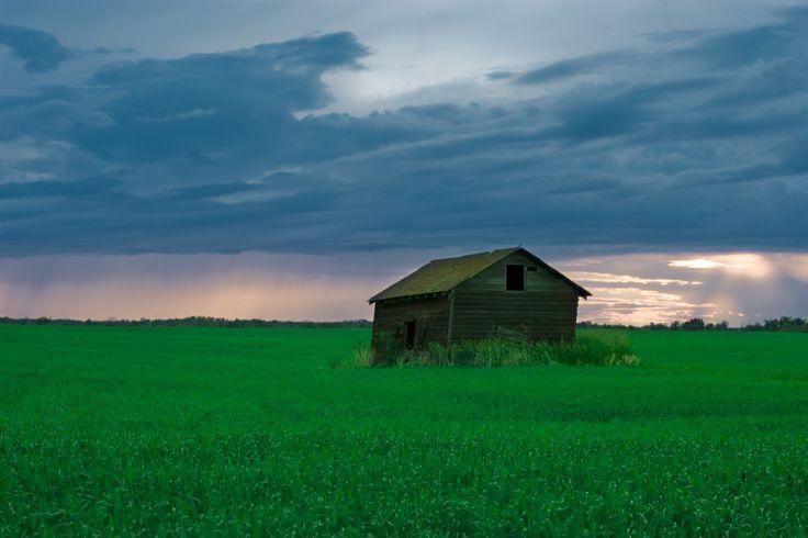 Vegreville Country scenery