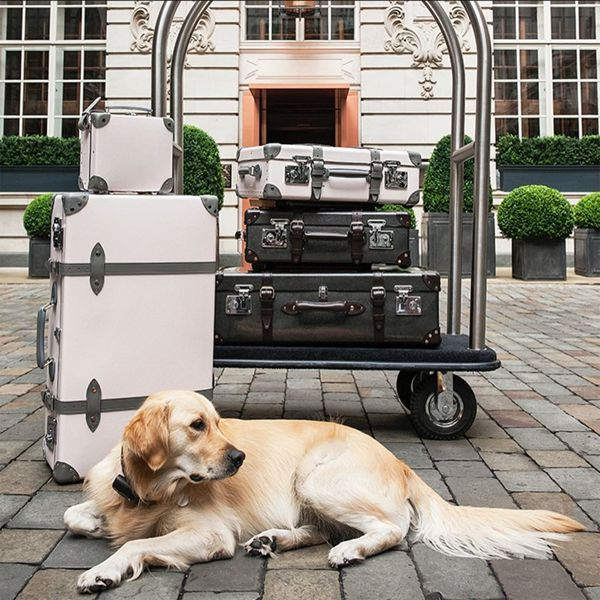 Love your dog more than your boyfriend? Of course you do. So thank goodness a bunch of London's smartest hotels have started catering for romantic breaks with your canine best friend