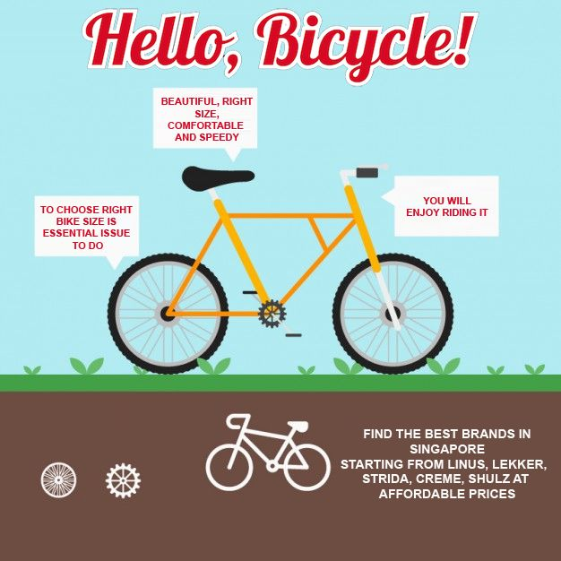 You Will Locate An Extensive Variety Of Kids Bicycle Singapore