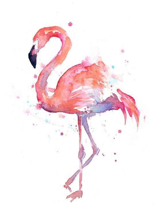 Flamingo Watercolor Art Art Print