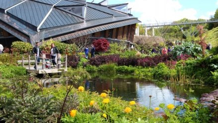 Cold snap makes colours pop at the Eden Project - The coldest spring in several decades has produced an extraordinary burst of colour in the Eden Project's great outdoors.