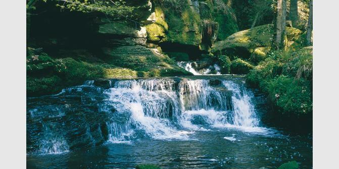 Das wildromantische Monbachtal im Schwarzwald ist ein landschaftliches Kleinod ersten Ranges. Es liegt etwa zwei  ...