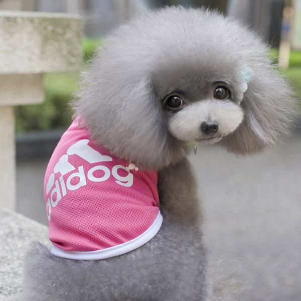 https://www.petboutiquestore.com/collections/frontpage/products/adidog-breathable-mesh-dog-pet-vest-summer-adidog-sport-clothes-s-xxl-for-small-medium-and-large-dogs  Adidog Breathable Mesh Dog Pet Vest Summer Adidog Sport Clothes S-XXL for Small Medium and Large Dogs