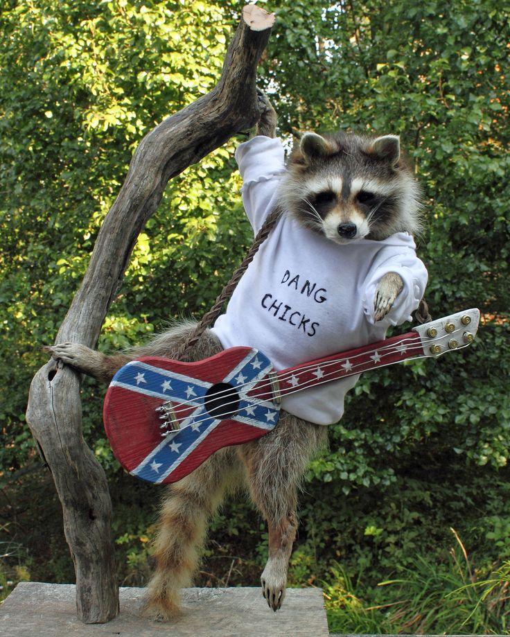 17 Best Images About Best Guitars On Pinterest: 17 Best Images About Pallet Wood Guitars On Pinterest