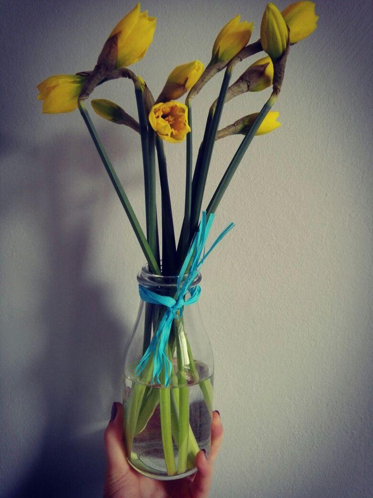 Flowers Yellowstone Spring
