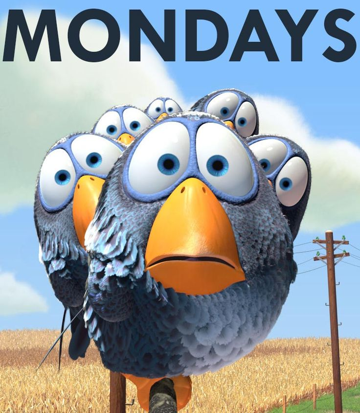 Humor Inspirational Quotes: 25+ Best Ideas About Monday Again On Pinterest