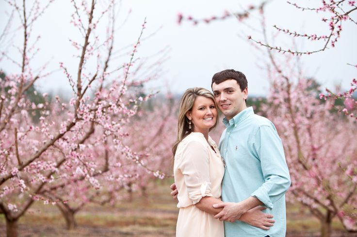 Engagement pictures in the peach orchard in spring :)