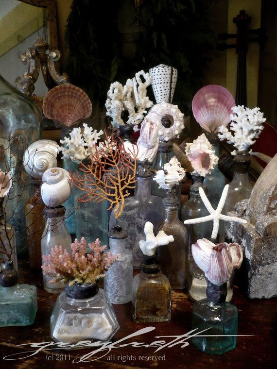 coral and shells on old bottles add height to display at back so all can be seen