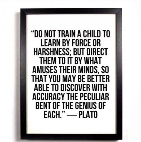 Amuse Their Minds - Plato