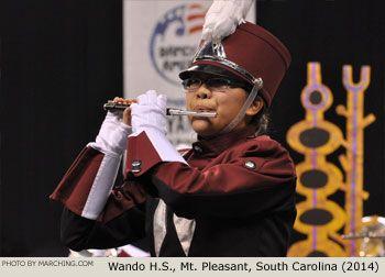 Wando High School Marching Band, South Carolina, 2014