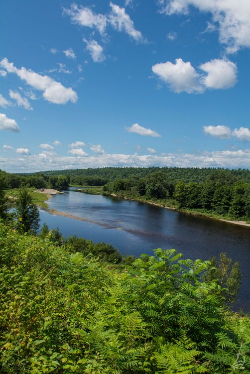 The beautiful Miramichi River winds through central New Brunswick and offers many outdoor recreation and fly-fishing experiences. | New Brunswick, Canada travel #ExploreNB #ExploreCanada