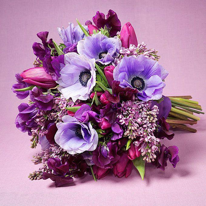Букет с фиолетовыми анемонами, букеты роз фото