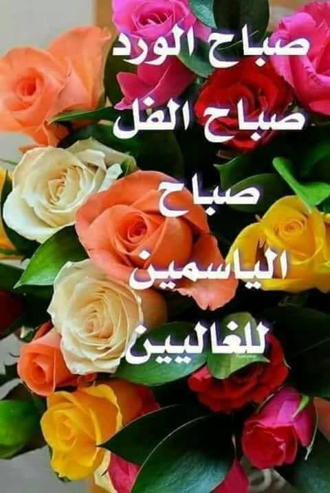 épinglé Par Ange Mouna Sur En Arabe Bonjour Bonne Soirée Belles