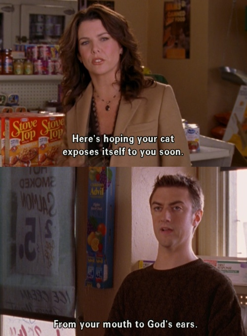 Lorelai: Here's to hoping your cat exposes itself to you soon. Kirk: From your mouth to God's ears.