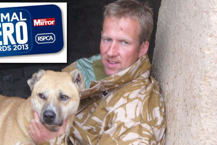 Animal Hero Awards 2013: Former Royal Marine Pen Farthing nominated after rescuing 500 dogs in Afghanistan