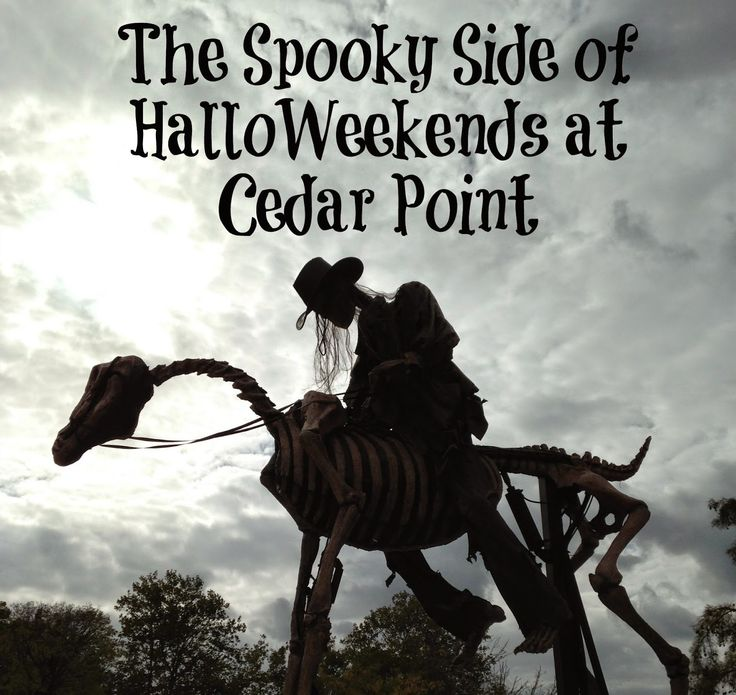 Cedar Point Trip Halloweekends in Sandusky, Cedar Point, Saturday, October - The bus holds 48 people the price to get on the bus is $25 you will have to purchase your ticket online or at.
