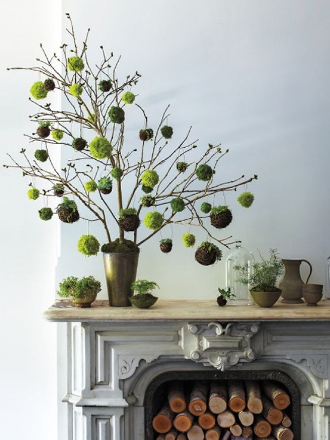 Osterzweig 2.0: cool, grün und stilsicher | Pflanzenfreude
