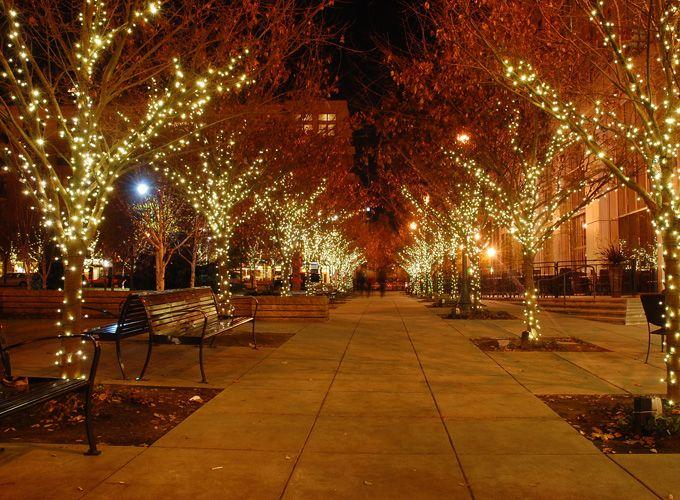 Best 11 christmas images on pinterest google images backgrounds google image result for httpeventa christmas lights aloadofball Choice Image