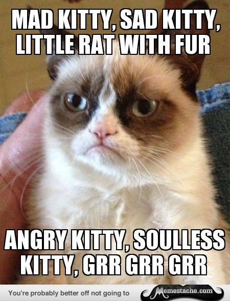 Grumpy Cat: mad kitty, sad kitty, little rat with fur...