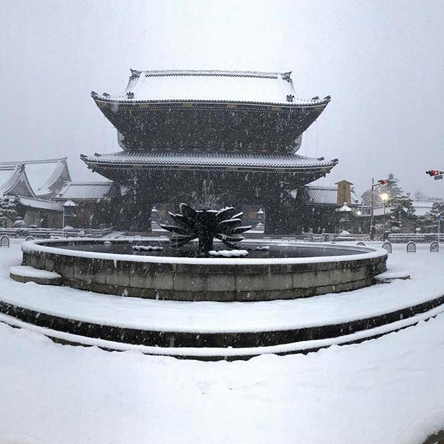 【nakaitaxi_kyoto】さんのInstagramをピンしています。 《中井タクシーの京都観光情報🚕 1/15朝、東本願寺の雪景色‼️ #Kyoto #Japan #Shrine #Temple #京都 #社寺 #紅葉 #桜》