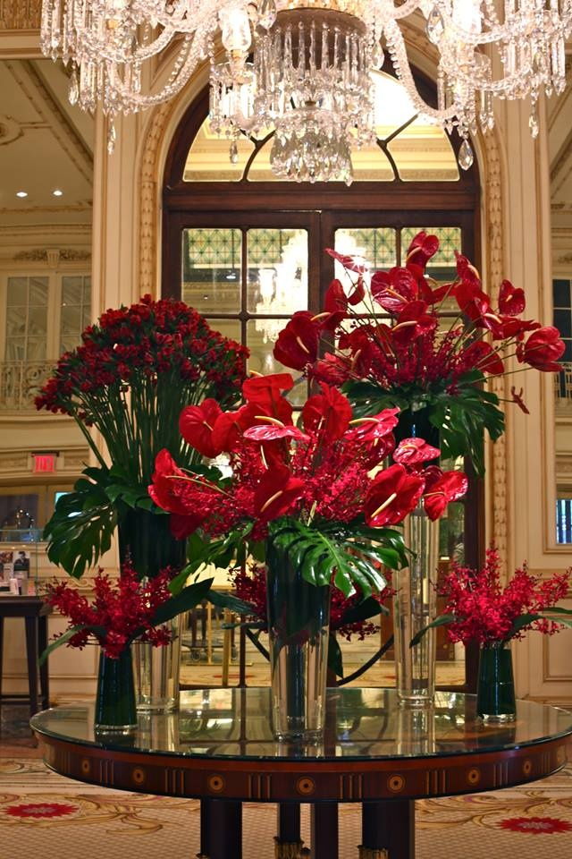 The plaza lipstick red colored anthuriums crimson mokara Christmas orchid arrangements