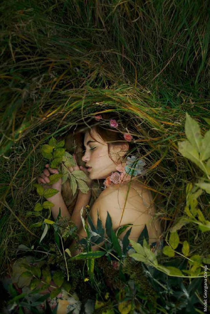 таком фото спят в лесу очередной день