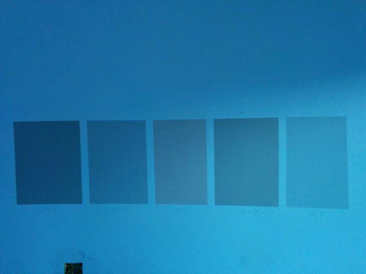 Scelta colore delle nuove camere