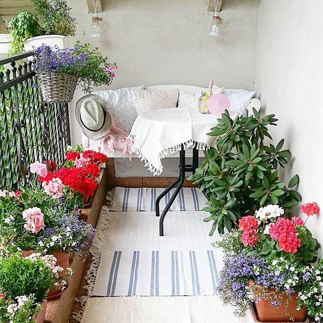 Co prawda dzisiaj jeszcze muszę pracować, ale już za kilka godzin usiądę tu z książką i będę odpoczywać.  #balkon #zielonaoaza #mojemiejsce #wakacje #cisza #odpoczynek #spokój #błogostan #weekend #plant #mybalkony #mygardentoday #myhome #pelargonia #kwiaty #flowers #bench #bohostyle #readingtime #readingplace #booktime #colourfullife #tv_stilllife #tv_retro #favoriteplaces