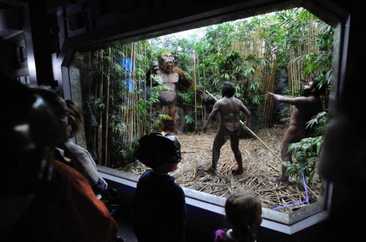 Prehistoryczne Oceanarium, dinozaury, gady, płazy i tunel czasu - te i inne atrakcje czekają na Was w Jura Parku Krasiejów!  Szczegóły tego pomysłu na weekend: http://www.nocowanie.pl/noclegi/krasiejow/parki_rozrywki/141142/