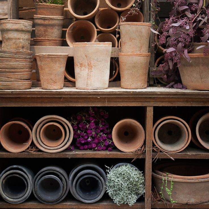 top 25 best large terracotta pots ideas on pinterest. Black Bedroom Furniture Sets. Home Design Ideas